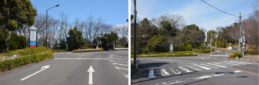 駐 車場 動物園 東山